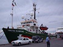 Los Glaciares Antárticos Retroceden