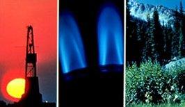 Presentan Libro sobre Gas Natural